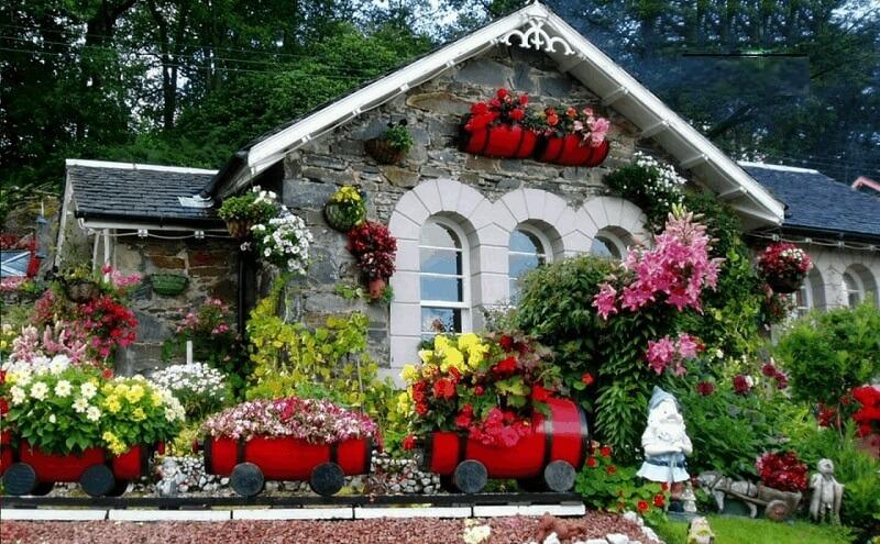 các loại hoa đẹp nở quanh năm