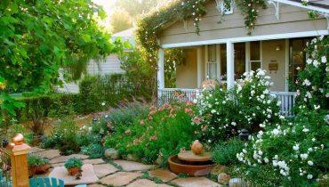 trồng hoa đẹp trước sân nhà