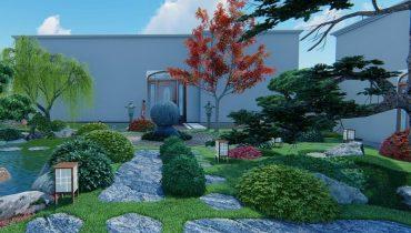 các loại cây trang trí sân vườn